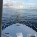 charter-boat-special-k-about-special-k-fishing-charters
